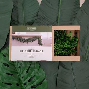 Smith & Hawken Preserved Boxwood Leaf Garland New